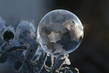 Kunst aus Eis und Seife van Susann Fleischer