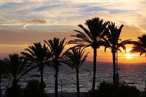 Zonsondergang met palmbomen  van Jet Couzijn