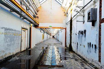 AaBe-Fabrik von Blond Beeld