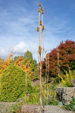 Herbstfarben. von Anjo ten Kate