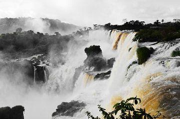 De prachtige Iguazu watervallen in Argentinië van Carl van Miert