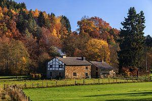 Autumn House van