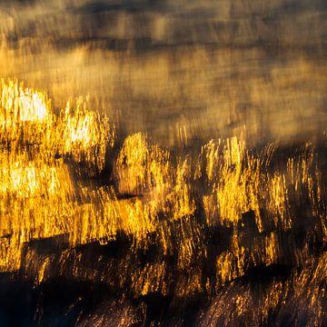 Sonnenwasser van Daniela Beyer