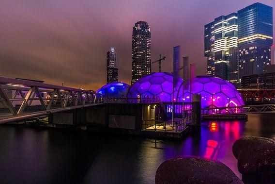 Paarse bolen Rotterdam van Michael van der Burg