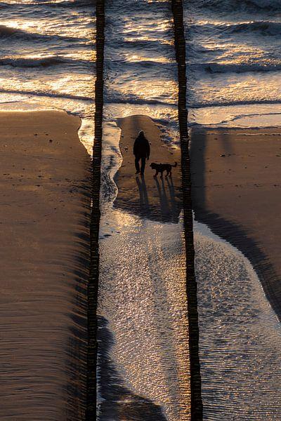 Walk the dog van Thom Brouwer