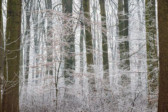 Amelisweerd op een winterse dag van Juriaan Wossink