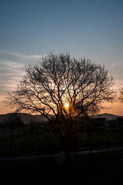 zonsopgang van Norbert Sülzner