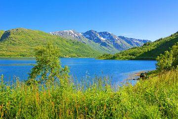 Gullesfjorden - Fjord in Norwegen von Gisela Scheffbuch