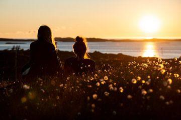 Vriendschap is: samen de middernachtzon zien van Ellis Peeters