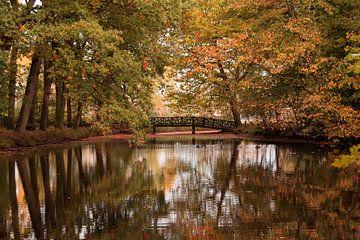 de herfst op zijn mooist van Jeannet Bijlsma