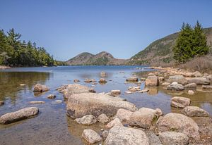 Acadia National Park: Jordan Pond van
