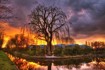 Spectaculaire zonsondergang en onweer bij sloot