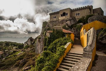 Up the hill von Omri Raviv