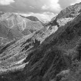 Vallei in het Reuzengebergte in Tsjechië, infrarood zwart-wit opname van Mark van Hattem