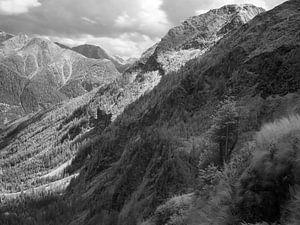 Vallei in het Reuzengebergte in Tsjechië, infrarood zwart-wit opname