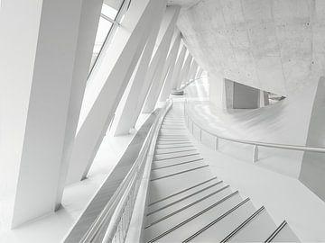 Witte trap van Wil Crooymans