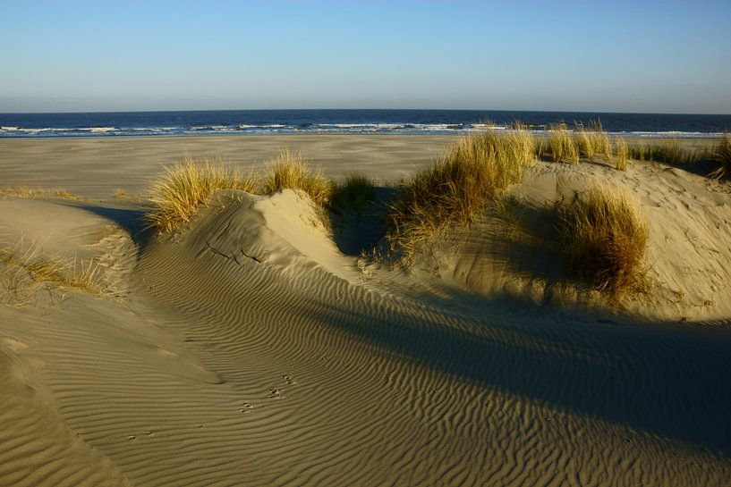 Strand en Duinen van Michel van Kooten