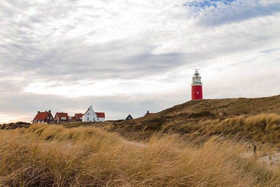 Lighthouse in the dunes of Texel. van Nicole van As