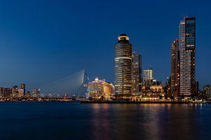 Aida Perla in Rotterdam in de avond