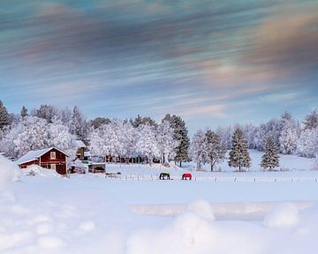 Winter im Norden von Schweden von Hamperium Photography