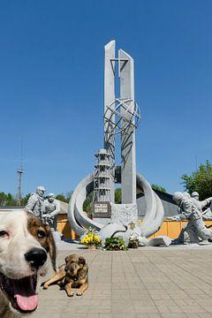 Peekaboo Tchernobyl / Les chiens de Tchernobyl