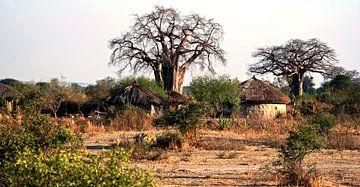 Village Masai sur Gert-Jan Siesling