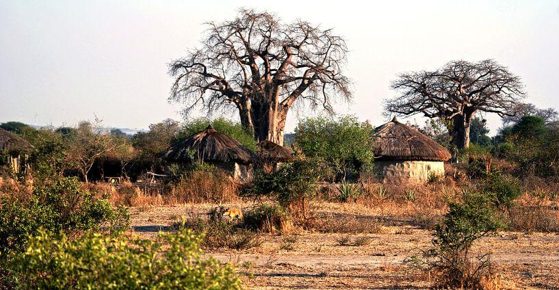 Masai dorp van Gert-Jan Siesling