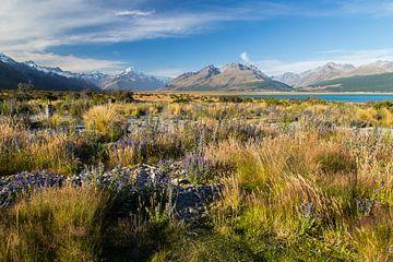Mount Cook, Nieuw-Zeeland, Lake Pukaki van Willem Vernes