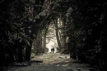 Sunday Stroll sur Nanouk el Gamal - Wijchers (Photonook)
