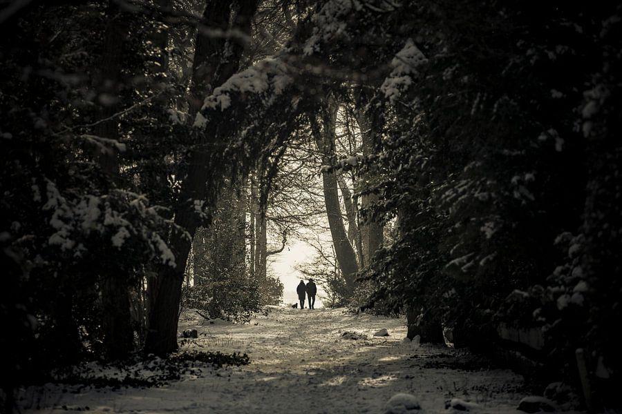 Sunday Stroll van Nanouk el Gamal - Wijchers (Photonook)