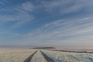 Weitblick über gefrorene Polderlandschaft von Beeldbank Alblasserwaard