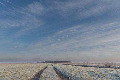 Winter in de Alblasserwaard:  een wijde blik over bevroren polderlandschap