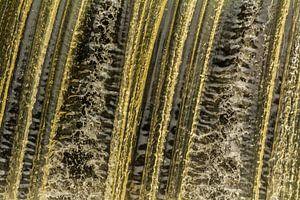Waterval in Nordhorn van Tonny Janssen