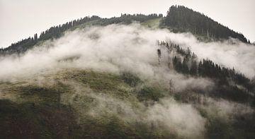 Alpiner Nebel 6 von Bart Rondeel