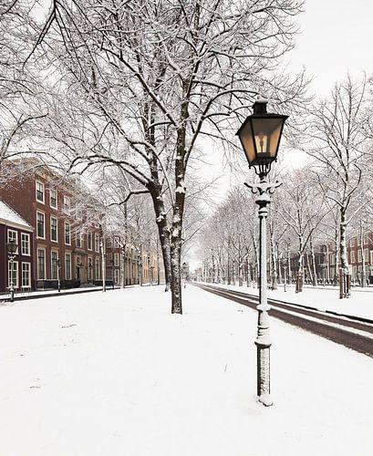 Winterse taferelen aan het Lange Voorhout te Den Haag