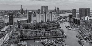 Rotterdam by Day - Uitzicht op de Leuvehaven en Wilhelminapier