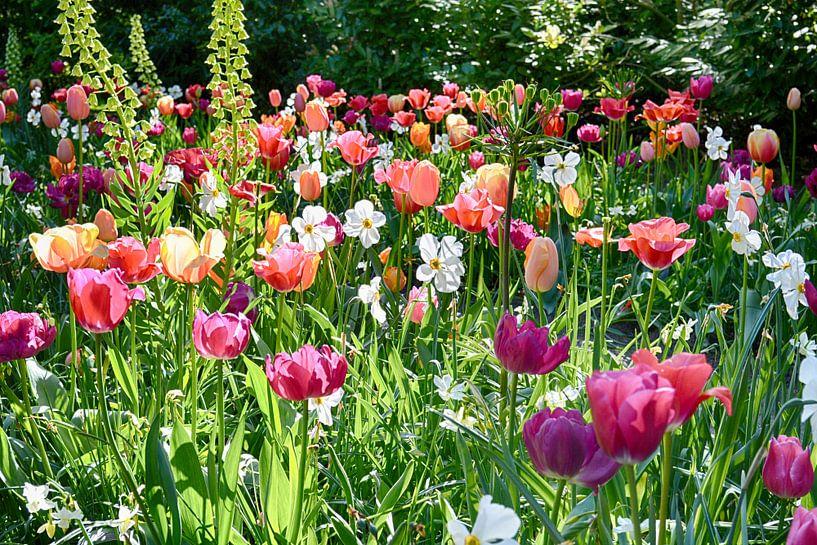 Blij zijn zij die van bloemen houden. van FotoGraaG Hanneke