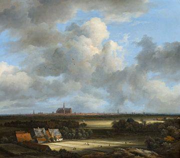 Ansicht von Haarlem mit Bleichen im Vordergrund, Jacob van Ruisdael