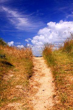 Pad naar de zee en het strand. Rust, zen van Bobsphotography