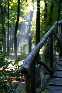 Wand decoratie bruggetje met bomen en zon van