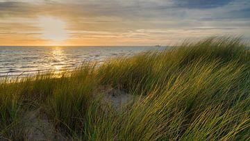 Noordzee met de Nederlandse duinen van eric van der eijk