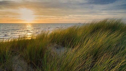 Noordzee met de Nederlandse duinen van
