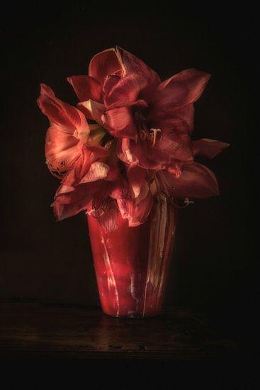 Rode amaryllis in rode vaas. Wout Kok One2expose van Wout Kok