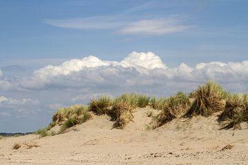Aan de kust van Irene Lommers