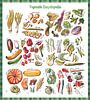 Groente Encyclopedia van Ariadna de Raadt thumbnail