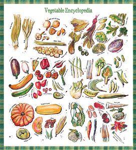 Groente Encyclopedia