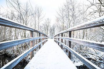 Besneeuwde brug in een winters landschap van Fotografie Jeronimo