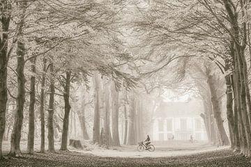 Ein Weg für viele ~ Larsochrome von Lars van de Goor