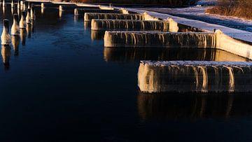 IJzige haven in ochtendlicht in natuurgebied van BJ Fleers