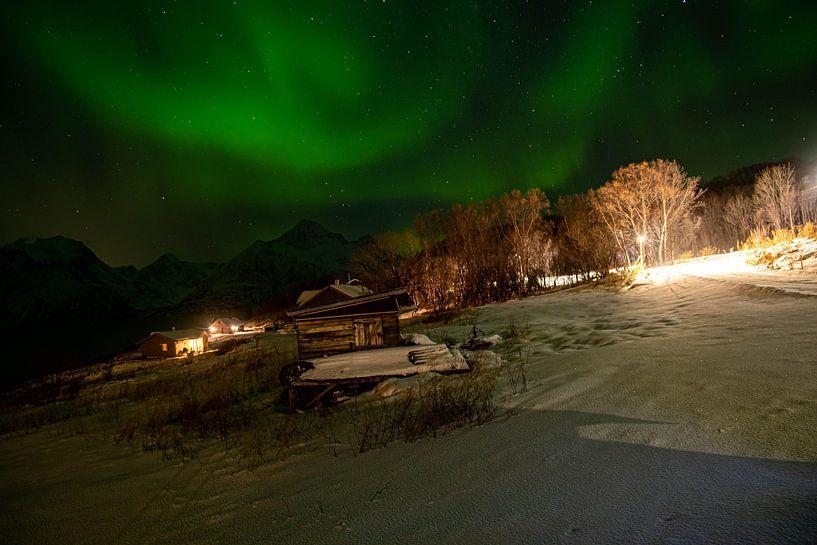Aurora von Merijn Loch
